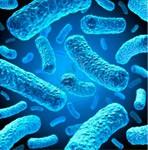 Como eliminar las bacterias